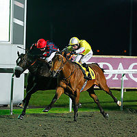 Passing Star and Robert Winston winning the 7.35 race