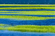 Sammys Town Beach, East Hampton, NY