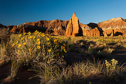 Temple of the Moon and Mules Ears, Morning Light, Cathedral Valley Loop, Capitol Reef National Park