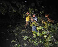Tees blocking the road on County Road 101 from storm damage in Oxford, Miss. on Wednesday, April 27, 2011.