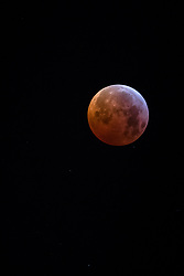 January 21, 2019 - Lisbon, Sintra, Portugal - The first lunar eclipse of the year took place. This phenomenon has the name of Super Red Moon or Wolf Blood Moon..Portugal watched the year's only total lunar eclipse at dawn from Sunday to Monday. (Credit Image: © Henrique Casinhas/SOPA Images via ZUMA Wire)