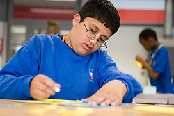 Portrait of boy concentrating on class work in Technology lesson,