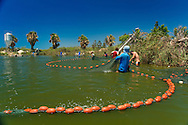 Professional fishermans at Maagan michael fish ponds