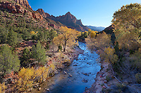 Utah landscape in Zion National Park. This famous view is one of the most photographed landscapes in Utah. Here Autumn colors create a colorful scene with the red rock background and Virgin river.