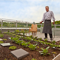 Chef Brad Long waters his rooftop kitchen garden at the Evergreen Brick Works, home of the new Belong Café.