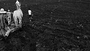 Terra de Elton Gomes Barbosa na comunidade rural Curral Velho no município de Porteirinha , Minas Gerais. Elton Gomes Barbosa é caatingueiro e presidente do Sindicato dos Trabalhadores Rurais de Porteirinha