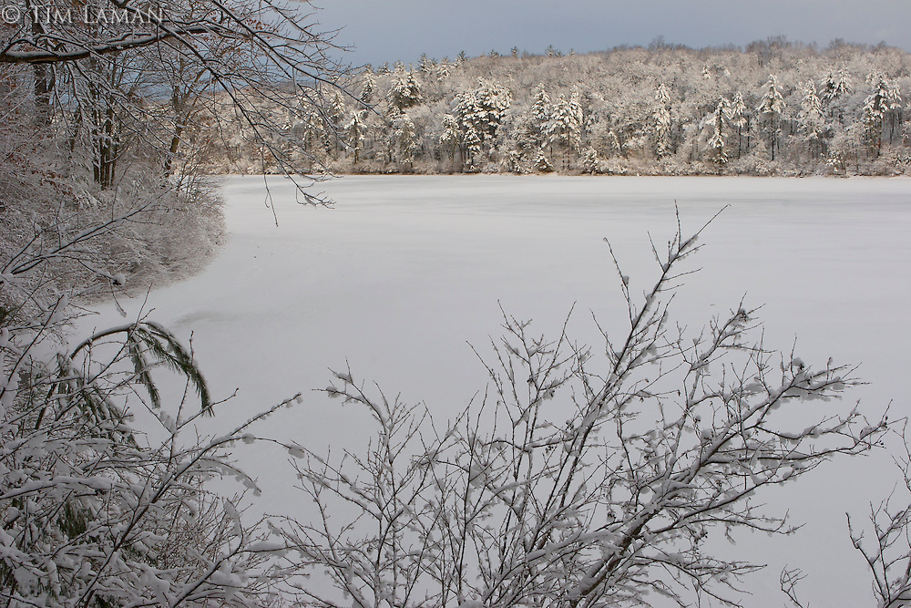 The morning after a winter storm at Walden Pond.