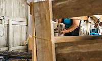 4H Fair at the Belmont Fairgrounds Sunday, August 10, 2014.  Karen Bobotas/for the Laconia Daily Sun
