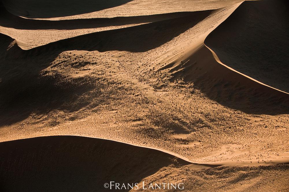 Sand dunes (aerial), Namib-Naukluft National Park, Namibia
