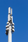 dual band cellular  communications antenna array on pole  with Rado Relay Units RRU and Tower Mount Amplifiers TMAs in Mackay, Queensland, Australia.