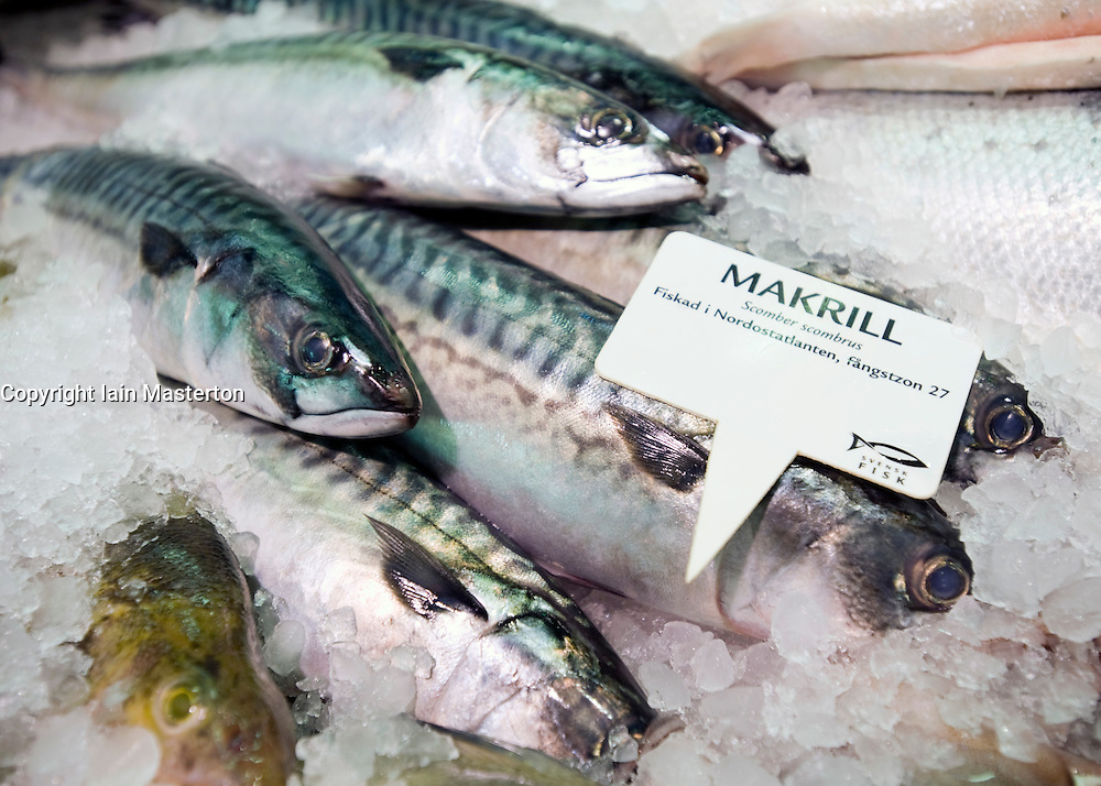 Detail of fresh mackerel fish for sale in famous historic Feskekorka Fishmarket in Gothenburg Sweden