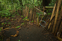 Snares set to capture wild animals (bush meat) along a fence set to force animals into the snares.  These snares are set illegally in a protected area.