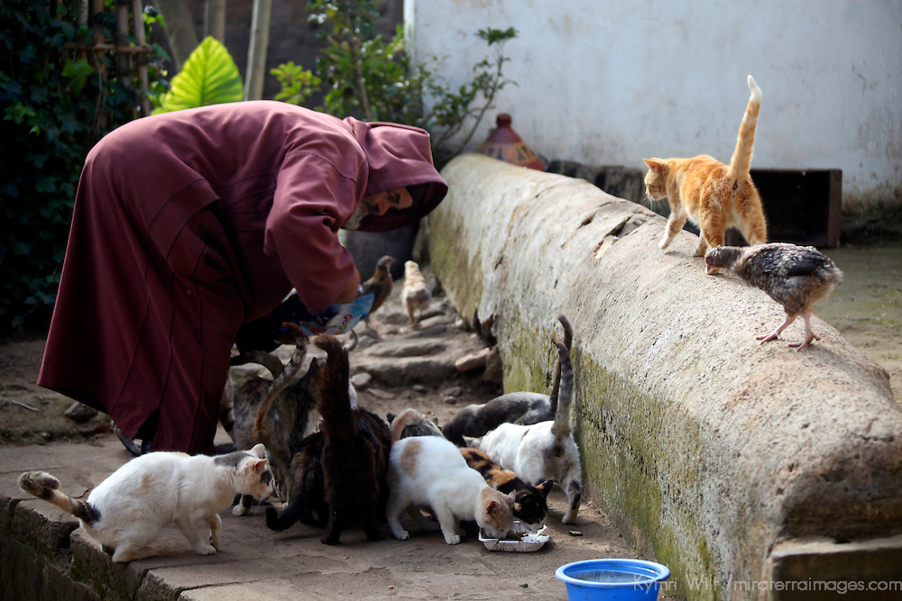 Africa, Morocco, Rabat. Caretaker of the Chellah looks after the cats too.