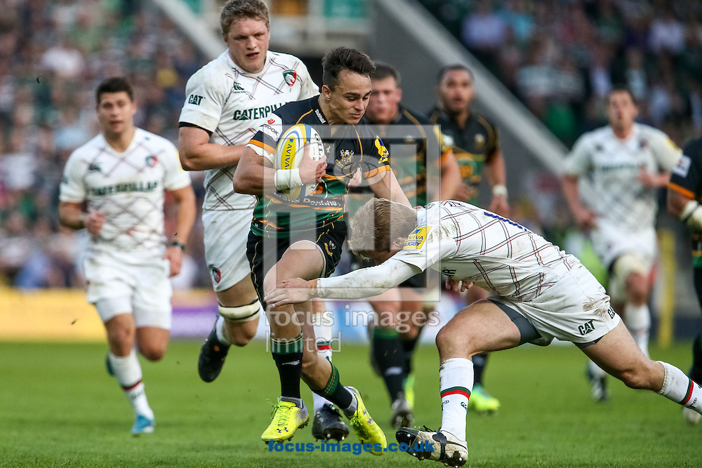 Tom Collins of Northampton Saints (centre) on the attack during the Aviva Premiership semi final at Franklin's Gardens, Northampton<br /> Picture by Andy Kearns/Focus Images Ltd 0781 864 4264<br /> 16/05/2014