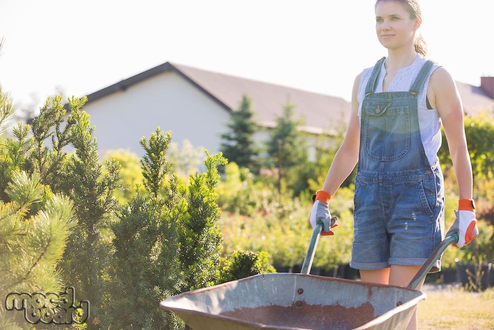 Female gardener pushing wheelbarrow at plant nursery