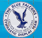 Blue Falcons - Ford End