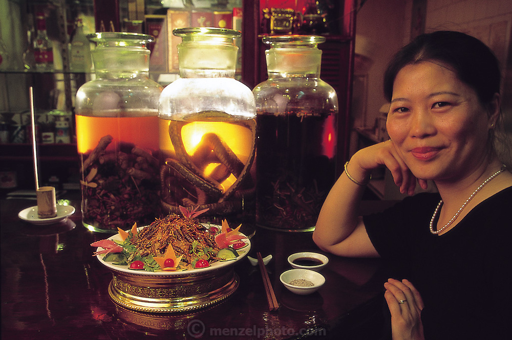Wang Lingyun, manager of the Yue Xiu seafood restaurant in Luoyang, with a plate of her specialty scorpions. On the bar behind are large jars containing potent rice wine with deer penises, snakes, and herbs. Luoyang, China. (Man Eating Bugs page 99 Top)