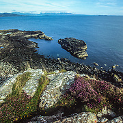 From Lunga I had to return to Mull and get more provisions in Tobermory before continuing on to the Small Isles – Muck, Eigg, Rum and Canna via Ardnemurchan, the westernmost point on mainland UK. This is a view back towards the mainland and Mull from Fladda, one of the other islands in the Treshnish Isles on the way back to Mull. The other islands and skerries at the south end of the archipelago are Cairn Na Burgh Mor and Cairn na Burgh Beag. I paddled above a lot of seaweed to the south of Lunga and the current was very strong. It was evidently another good area for basking sharks to feed because I encountered two more, but wasn't able to remain with them for very long. The swells were getting bigger and by the time I reached Treshnish Point on Mull and entered the bay on the other side I knew that it was going to be really hard work, and that I had to really stay focussed to stay in control because the combination of the strong south-westerly wind, strong currents and confused waves was swinging me every which way. The conditions were very similar and just as challenging as when I had to fight to get to Arinagour on Coll. I was very relieved to reach the other side and round Callach Point to find calmer sea conditions. From there it was a much easier paddle to gat back to my campsite in Ardmore Bay at the northern point of Mull.