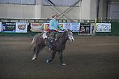 WRHR 18 Stock Horse Challenge