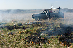 "An unidentified worker from the Flying W Ranch near Clements, Kansas controls the burning of ranch prairie during the ""Flames in the Flint Hills."" This agritourism event allows ranch guests to take part in lighting the prescribed burns. Prairie grasses in the Kansas Flint Hills are intentionally burned by land mangers and cattle ranchers in the spring to prepare the land for cattle grazing and help maintain a healthy tallgrass prairie ecosystem. The burning is also an effective way of controlling invasive plants and trees. The prairie grassland is burned when the soil is moist but grasses are dry. This allows the deep roots of the grasses to survive and the burned grasses on the soil surface return as nutrients to the soil. These nutrients allow for the rapid growth of new grass. After approximately two weeks of burning, new grass emerges. Less than four percent of the original 140 million acres of tallgrass prairie remains in North America. Most of the remaining tallgrass prairie is in the Flint Hills in Kansas."