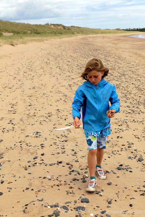 Europe, Ireland, Brittas Bay. A young girl shelling at Brittas Bay, County Wicklow.