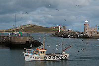 Fisherman boat coming back from fishing day, Howth harbour, Dublin, Ireland.