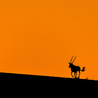 AFRICA - NAMIBIA
