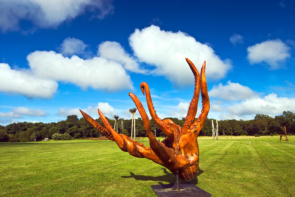 Channing Daughters Winery, sculpture,Tree Root, Octopus, New York, Bridgehampton, Long Island, South Fork