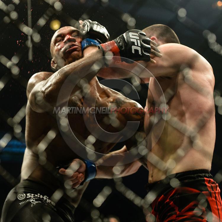 "STOCKHOLM, SWEDEN, JANUARY 24, 2015: Albert Tumenov and Nico Musoke during ""UFC on Fox 14: Gustafsson vs. Johnson"" inside Tele2 Arena in Stockholm, Sweden"