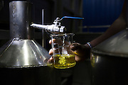 Freshly distilled cinnamon oil is collected after a 5-6 hour distillation process at the modern factory of P.T.C Agro. An hour east of Colombo, cinnamon flakes are distilled to produce extremely high quality cinnamon oil that they export abroad.
