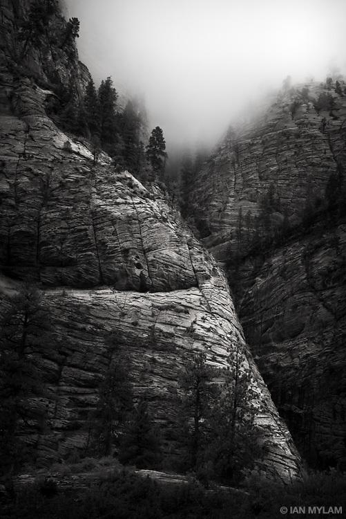 Zion National Park, Utah, U.S.A.