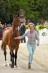 Mary King (GBR) leads Imperial Cavalier for the vet's inspection during the trot up at the 2013 Mitsubishi Motors Badminton Horse Trials. Thursday 02  May  2013.  Badminton, Gloucs, UK..Photo by: Mark Chappell / i-Images