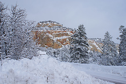 Zion National Park - Winter
