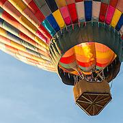 Temecula hot air balloon festival
