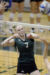 27 October 2006: Sarah Vetger hits a solid strike towards the Bears side of the court. The Bears won the match 3 games to 1.The match between the Washington University Bears and the Illinois Wesleyan Titans took place at Shirk Center on the IWU campus in Bloomington Illinois.<br />