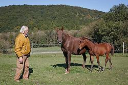 Lauwers Yves, (BEL)<br /> Ryonne des Hayettes Z (Ryon d'Anzex aa & Everest Life Style BWP) et son foal femelle de 2015, Javanaise des Hayettes par Banboula du Thot.<br /> Hayettes.Haras des Layettes - Falaën  2015<br /> © Hippo Foto - Dirk Caremans<br /> 02/10/15