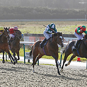 Mr Bossy Boots and Jim Crowley winning the 1.10 race