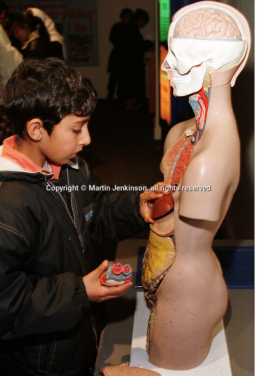Year 6 pupil learning anatomy on a model torso at the Thackray Medical Museum in Leeds....