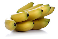 Bunch of bananas on white background