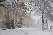 France. Paris. 8th distrct. petit palais , Paris under the snow / Paris sous la neige en hiver