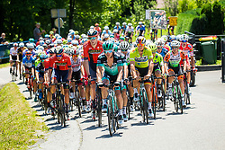 Peloton and Pascal Ackermann (GER) of Bora - Hansgrohe during 2nd Stage of 26th Tour of Slovenia 2019 cycling race between Maribor and  Celje (146,3 km), on June 20, 2019 in Celje, Maribor, Slovenia. Photo by Vid Ponikvar / Sportida