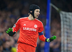LONDON, ENGLAND - Wednesday, December 10, 2014: Chelsea's goalkeeper Petr Cech in action against Sporting Clube de Portugal during the final UEFA Champions League Group G match at Stamford Bridge. (Pic by David Rawcliffe/Propaganda)