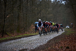 Ellen van Dijk (NED) leads across the cobbles at Ronde van Drenthe 2019, a 165.7 km road race from Zuidwolde to Hoogeveen, Netherlands on March 17, 2019. Photo by Sean Robinson/velofocus.com