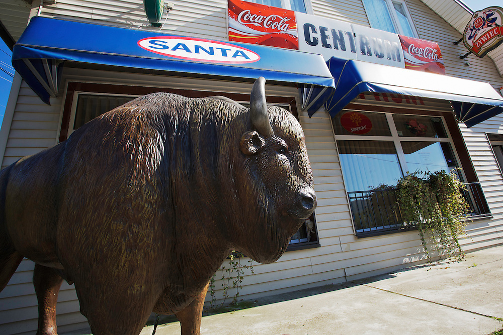 Plastic statue of a European bison or Wisent (Bison bonasus) at the entrance of a bar in Ustrzyki Górne, Bieszczady National Park, Poland.