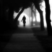 A lone girl walking down a tree covered sidewalk in the fog.