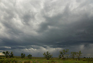 A spring storm rolls in over Sun Prairie at American Prairie Reserve on the Great Plains of Montana. South of Malta in Phillips County, Montana.