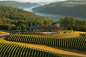 Oregon Wine Tours - Lumaria for Private Clubs Mag
