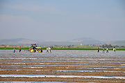 Israel, Beit Shean Valley Kibbutz farming