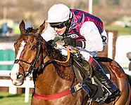 Cheltenham International 131214