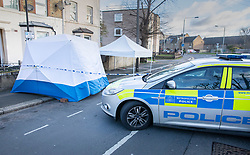 © Licensed to London News Pictures. 07/03/2019. London, UK. Police evidence tents cover the crime scene in North Birkbeck Road in Leyton in east London where a murder investigation has been launched after a man in his twenties was stabbed on Wednesday. Photo credit: Peter Macdiarmid/LNP